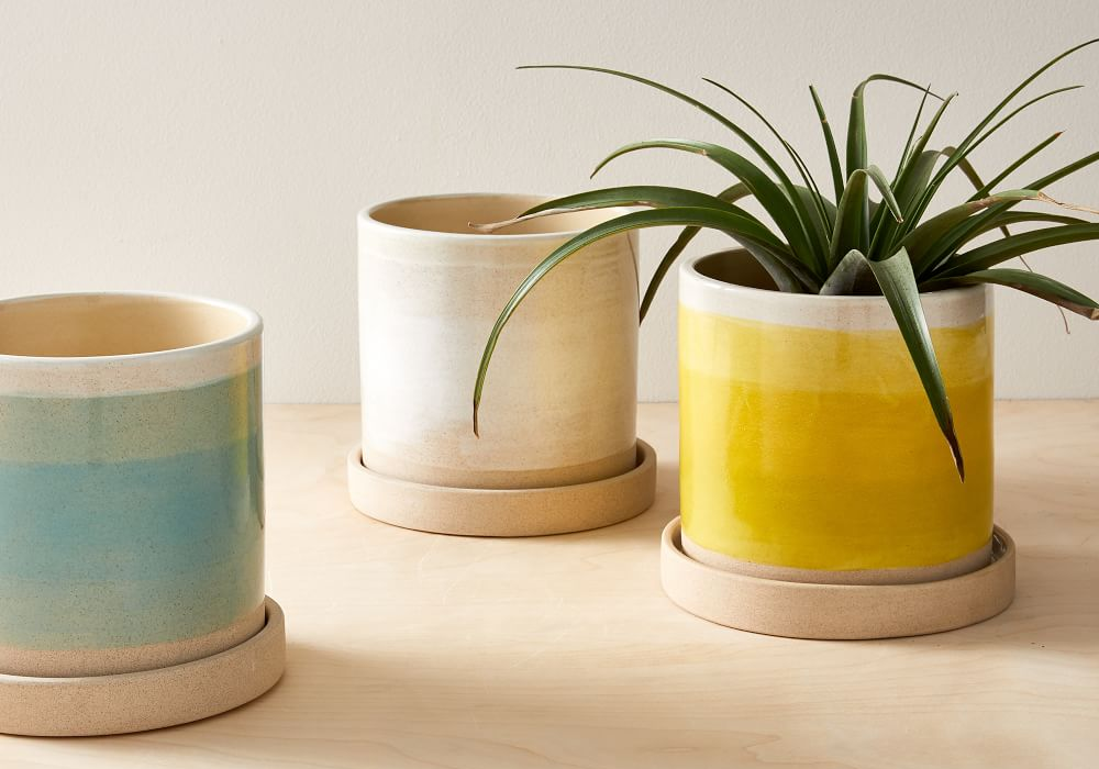 three ceramic planters from West Elm in white, turquoise, and yellow